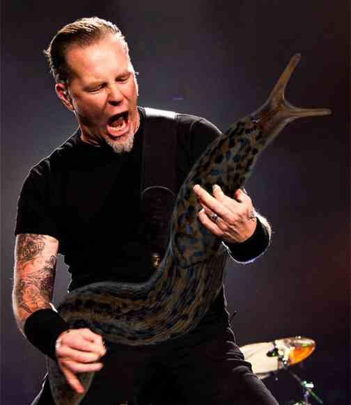 James Hetfield - Metal Slug